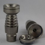 Salt Shaker Domeless Nail Male4